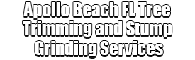 Apollo Beach FL Tree Trimming and Stump Grinding Services Logo-We Offer Tree Trimming Services, Tree Removal, Tree Pruning, Tree Cutting, Residential and Commercial Tree Trimming Services, Storm Damage, Emergency Tree Removal, Land Clearing, Tree Companies, Tree Care Service, Stump Grinding, and we're the Best Tree Trimming Company Near You Guaranteed!