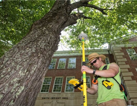 Arborist Consultations-Apollo Beach FL Tree Trimming and Stump Grinding Services-We Offer Tree Trimming Services, Tree Removal, Tree Pruning, Tree Cutting, Residential and Commercial Tree Trimming Services, Storm Damage, Emergency Tree Removal, Land Clearing, Tree Companies, Tree Care Service, Stump Grinding, and we're the Best Tree Trimming Company Near You Guaranteed!