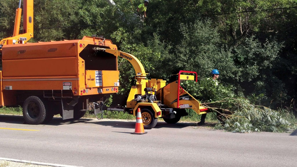Commercial Tree Services-Apollo Beach FL Tree Trimming and Stump Grinding Services-We Offer Tree Trimming Services, Tree Removal, Tree Pruning, Tree Cutting, Residential and Commercial Tree Trimming Services, Storm Damage, Emergency Tree Removal, Land Clearing, Tree Companies, Tree Care Service, Stump Grinding, and we're the Best Tree Trimming Company Near You Guaranteed!