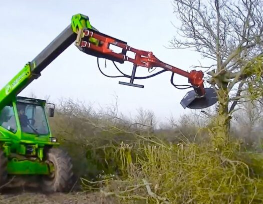 Tree Trimming Services-Apollo Beach FL Tree Trimming and Stump Grinding Services-We Offer Tree Trimming Services, Tree Removal, Tree Pruning, Tree Cutting, Residential and Commercial Tree Trimming Services, Storm Damage, Emergency Tree Removal, Land Clearing, Tree Companies, Tree Care Service, Stump Grinding, and we're the Best Tree Trimming Company Near You Guaranteed!
